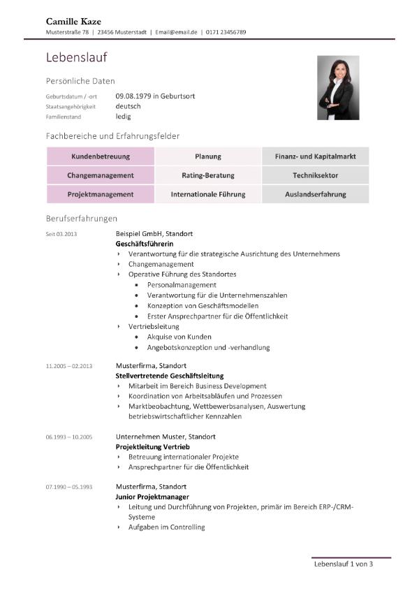 Bewerbungsvorlage Management - Lebenslauf