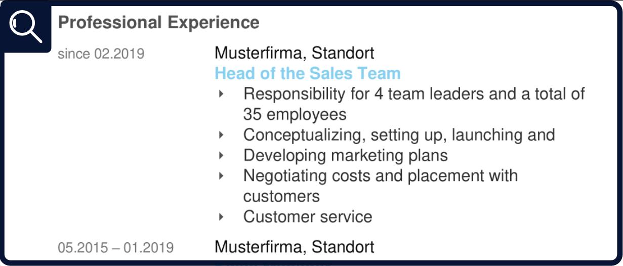 Résumé - Professional Experience