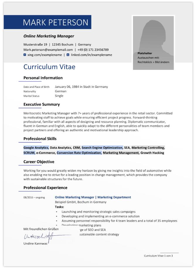 Vorlage Englisch CV